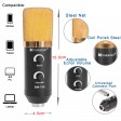 USB Condenser Microphone Studio Audio Broadcast Sound Recording Tripod Stand